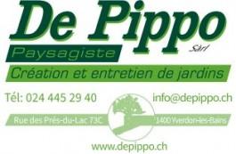 Association Yverdon Sport Juniors_De Pippo Sàrl