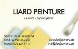 Liard Peinture_La Tour-de-Peilz