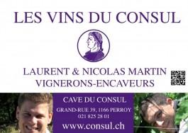 Pied du Jura_Les vins du Consul
