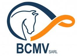 US Terre-Sainte_BCMV Sàrl
