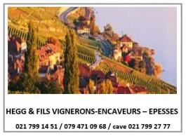 Vignoble_Hegg&Fils Vignerons