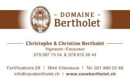 Villeneuve Sport_Domaine Bertholet