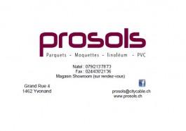 Yvonand_Prosols