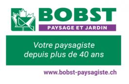 bobst_Ass.yverdon
