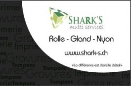 sharks_bursins