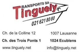 tinguely_ecublens